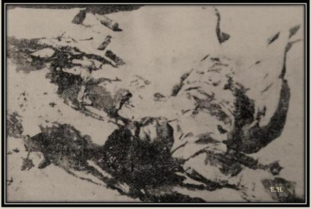 5-7-1958-papageorgiou-loukia-dead