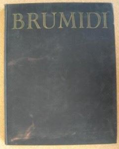 The book Brumidi Michelangelo of the Capitol by Myrtle Cheney Murdock